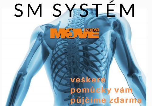 SM systém